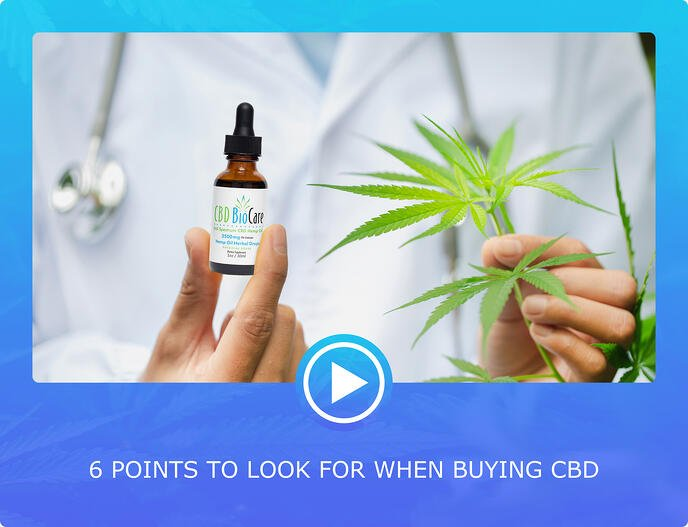 6 PONT TO LOOK FOR WHEN BUYING CBD-1